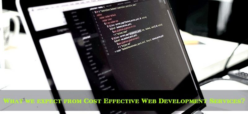 cost-effective-web-development-services What we expect from Cost Effective Web Development Services?