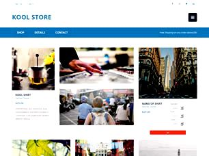 Kool Store Free Website Template