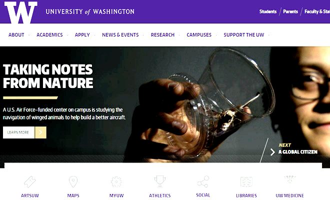 university of washington college site